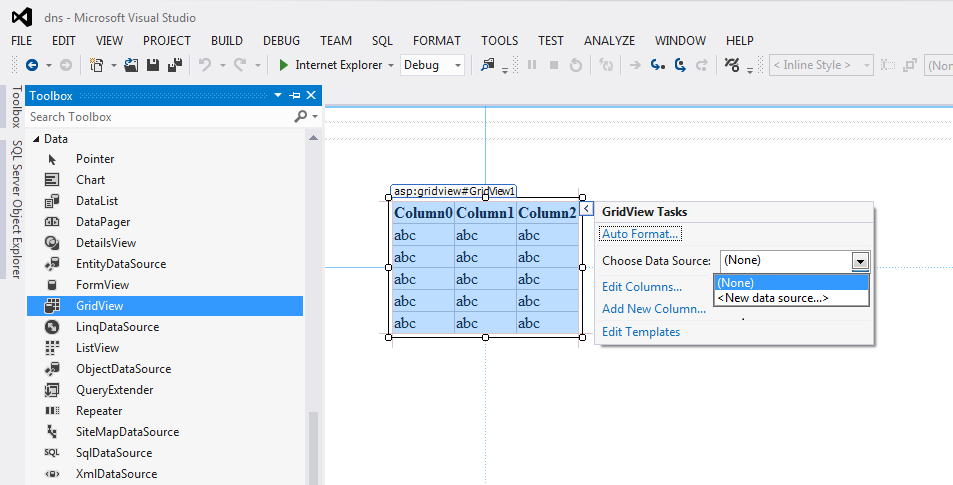 Adding a GridView control in Asp.Net project